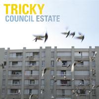 tricky_councilestate2.jpg